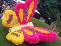 Festival de Flores y Jardines 2019