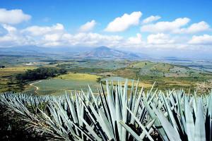 Tequila-Jalisco-será-Pueblo-Mágico-inteligente